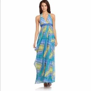 BCBG long dress/gown 4